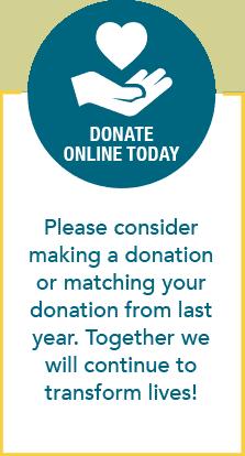 Donate online button